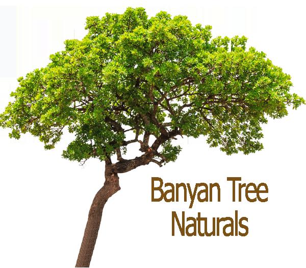 Banyan-Logo-sm2